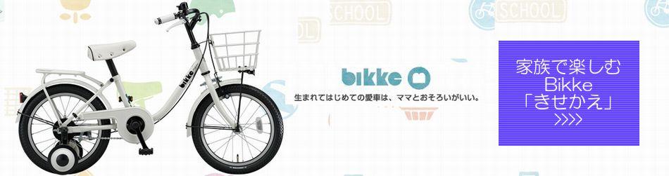 自転車の 自転車講習会 埼玉 : 取り扱いメーカー 自転車 ...